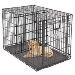 Puppy Bench