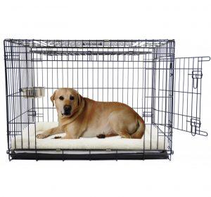 Bench Boon Labrador Groot